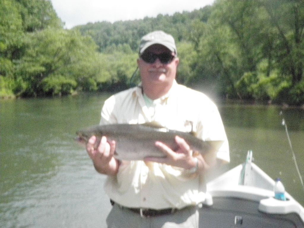 Toccoa river big rainbow deep south fly anglers for Toccoa river fishing