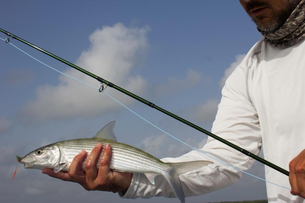 Isla blanca mexico fly fishing deep south fly anglers bonefish solutioingenieria Images