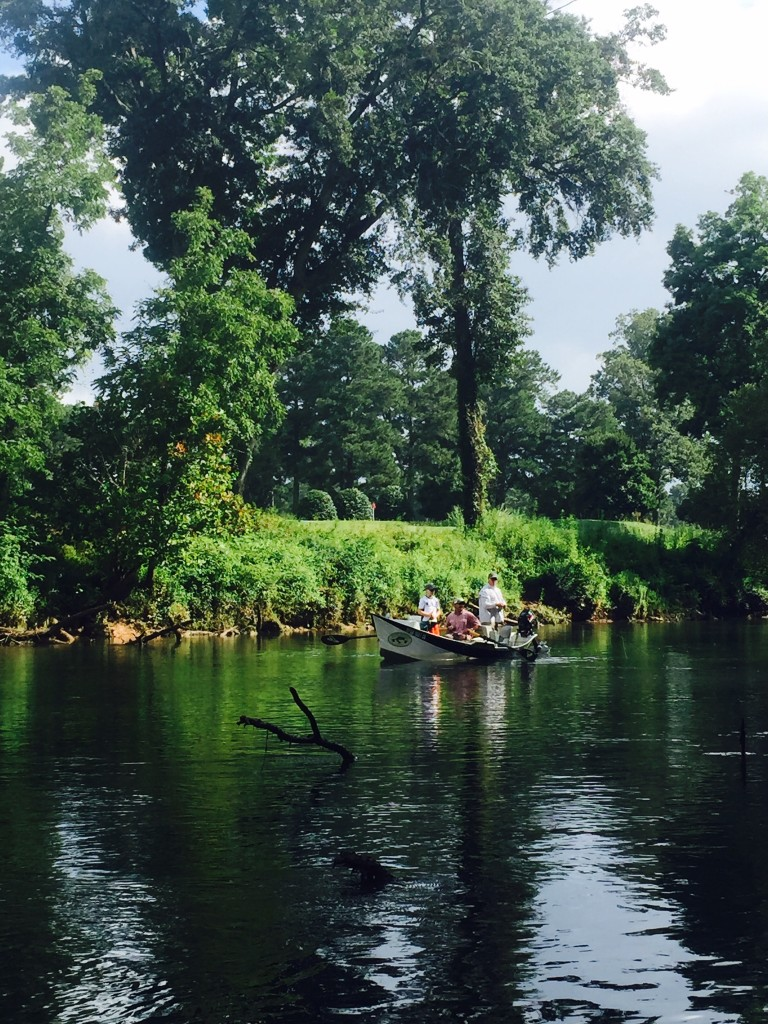 Chattahoochee river guide trip archives deep south fly anglers for Chattahoochee river fishing