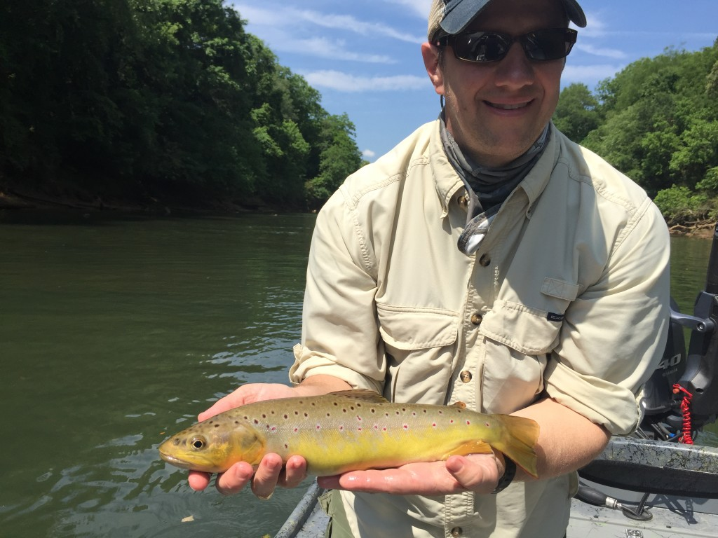Chattahoochee river and private trophy trout georgia fly for Trout fishing in ga