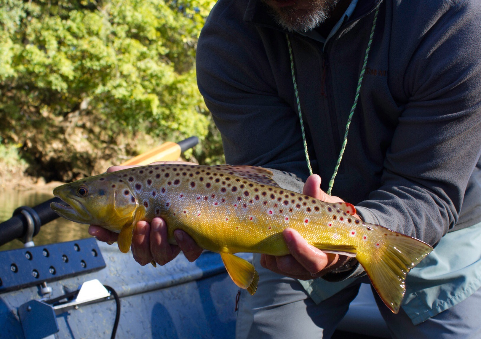 Chattahoochee river fly fishing and cartecay river farm for Fishing in atlanta