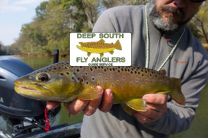 Atlanta Georgia Fly Fishing Guide Trips